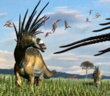 Nueva especie de dinosaurio con largas y mortales espinas descubierta en Argentina