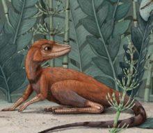 Descubren una nueva y diminuta especie de dinosaurio